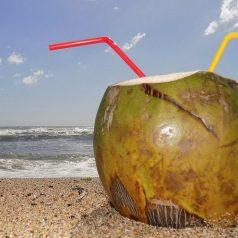 Co powinieneś wiedzieć na temat wody kokosowej?